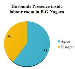 Husband's participation in birth preparedness and complication readiness